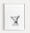Baby Lamb Printable Art - Black and White