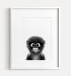 Baby Monkey Black and White Printable Art