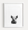 Baby Pig Black and White Printable Art