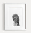Baby Squirrel Black and White Printable Art
