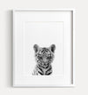 Baby Tiger Black and White Printable Art