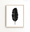 Banana leaf - black and white Printable Art