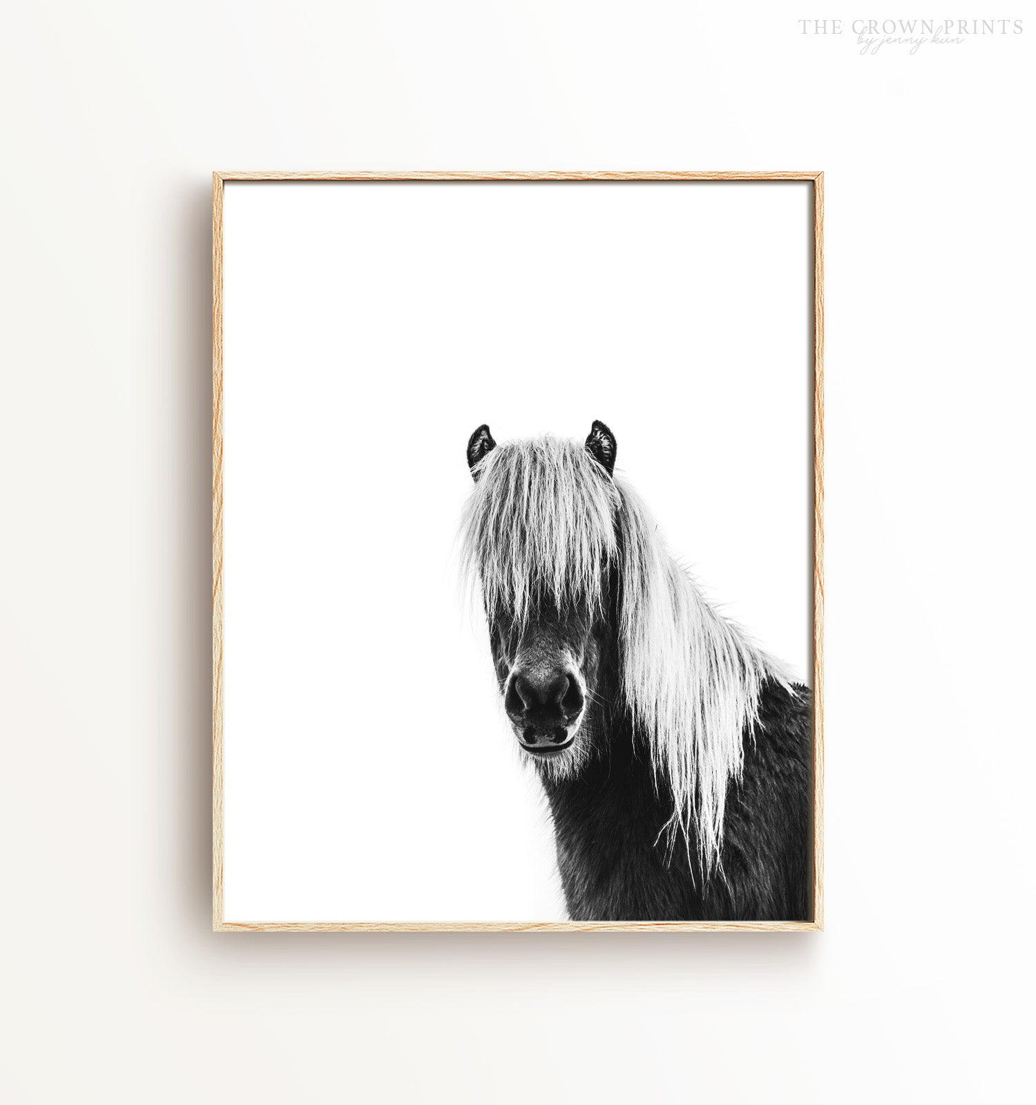 Black & White Shaggy Horse Printable Art