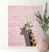 Giraffe on a Pink Wall Printable Art