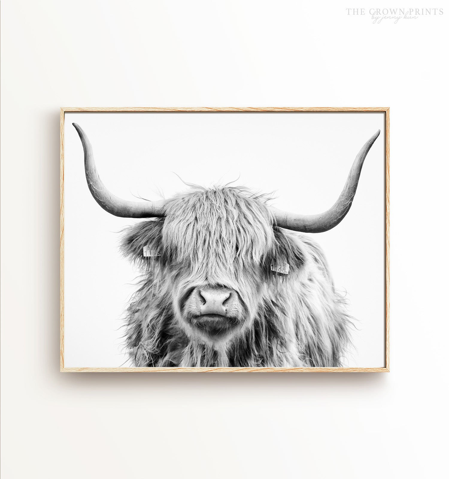 Highland Cow No. 3 Head Shot, Black and White Printable Art