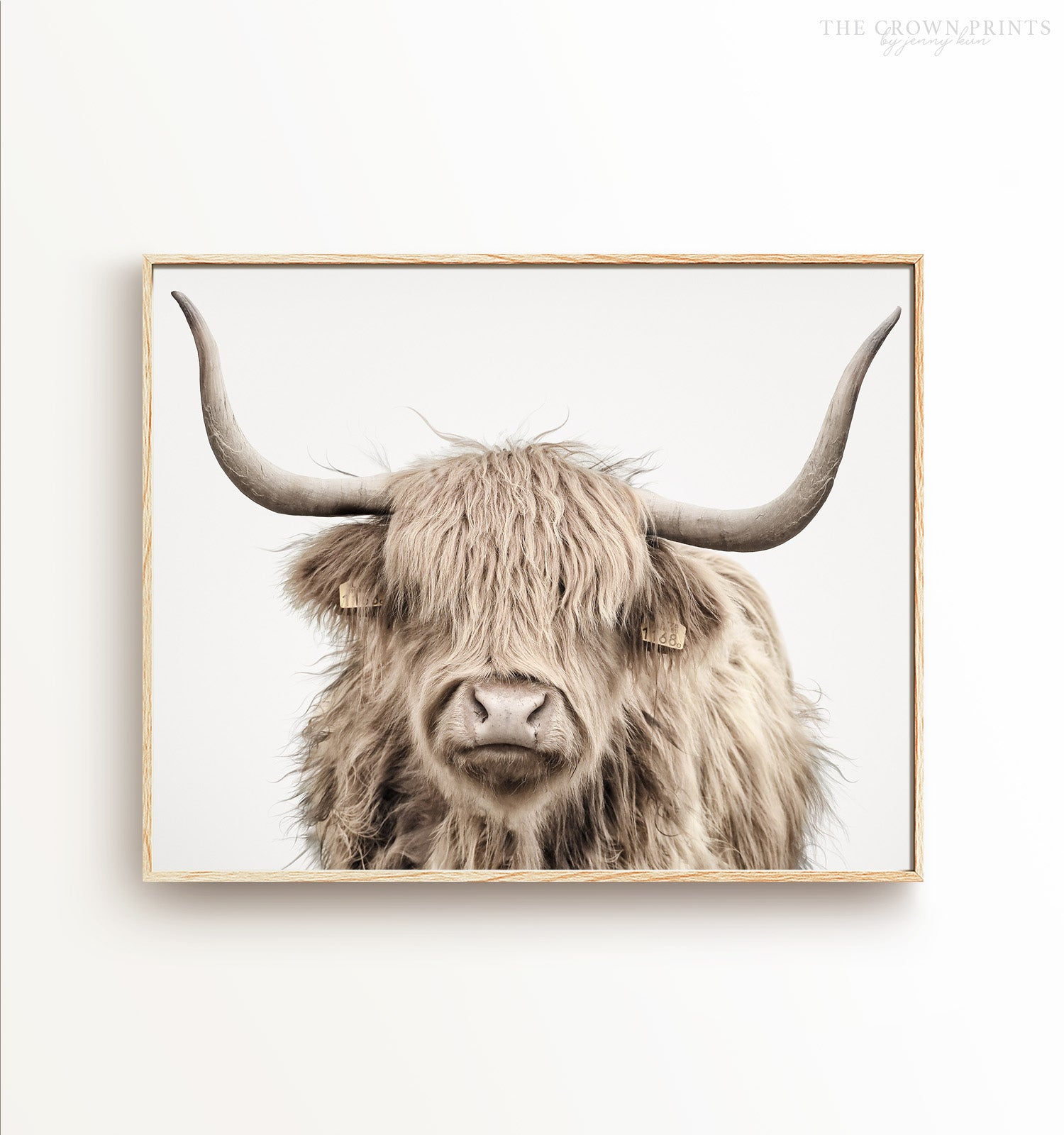 Highland Cow No. 3 Head Shot Printable Art