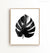 Philodendron Print in Black and White
