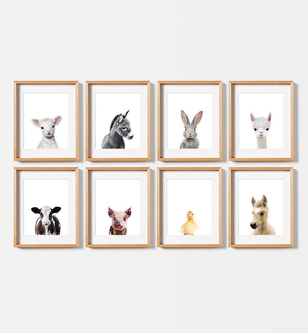 Farm Animal Prints - Set of 8 baby animals - The Crown Prints