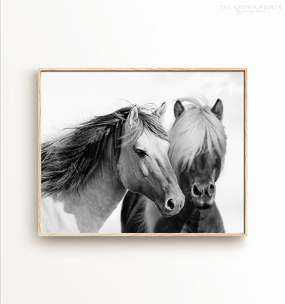 Two horses print
