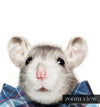 Baby Rat with Bow Tie Printable Art