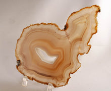 Brazilian agate slab - front view