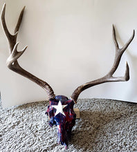 patriot Mule Deer skull - full view