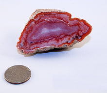 Ansi-agate-index-for size