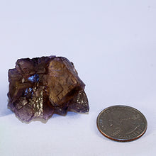 Fluorite crystal cluster - index with quarter
