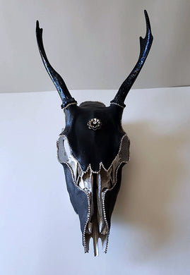 Buck skull with leather and crystals