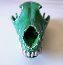 Pete's Dragon - coyote skull front view