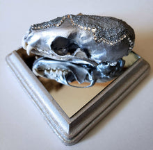 Silver Martin skull - side view on mirror base