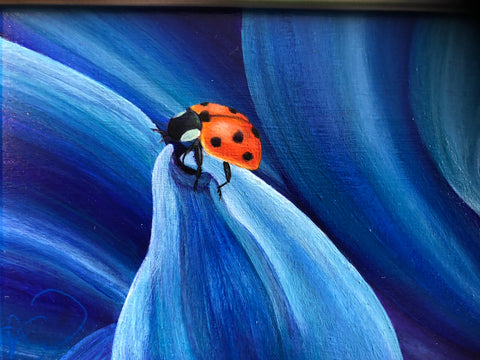 Lady Bug Blues