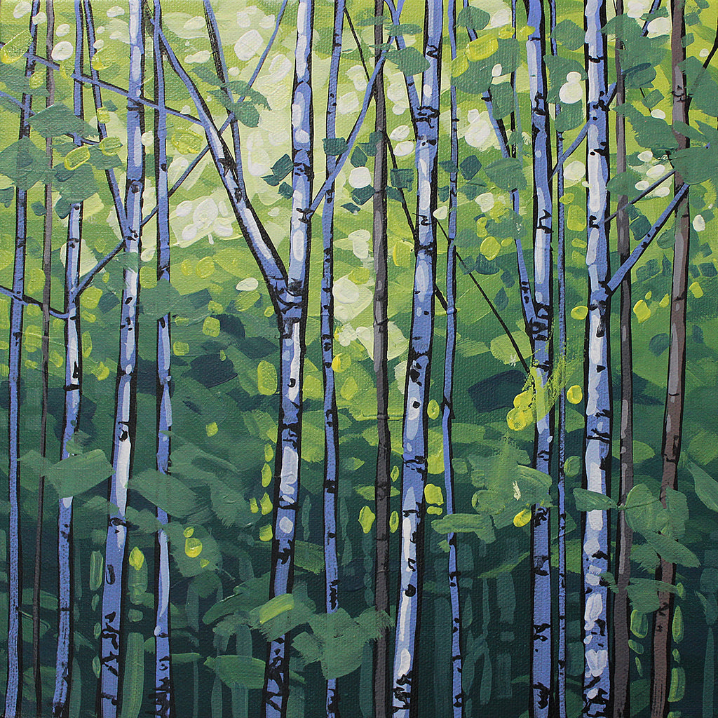 Aspen Summer, acrylic painting by Peter John Reid featuring white barked aspen trees with various green foliage.