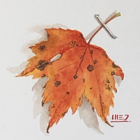 watercolour painting of red maple leaf stapled to white paper