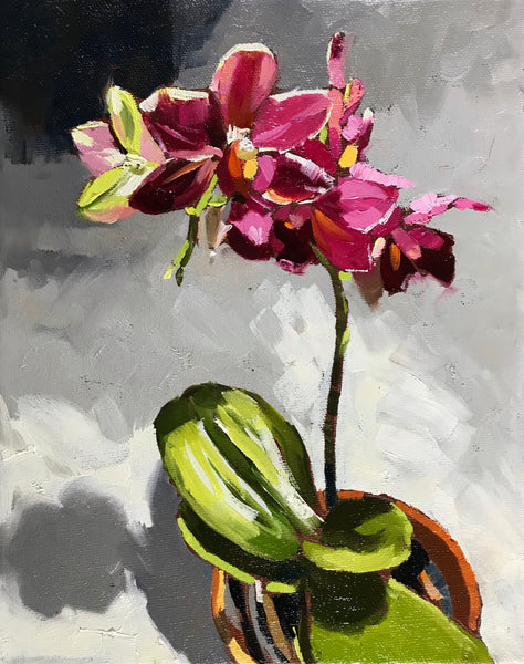 Small oil painting of a deep pink orchid by Nova Scotia artist Mark Grantham.  The rim of it's orange terracotta pot, behind it's rounded bright green leaves, is visible in the bottom right corner. The background fades from the top left black corner to gray, and then white.