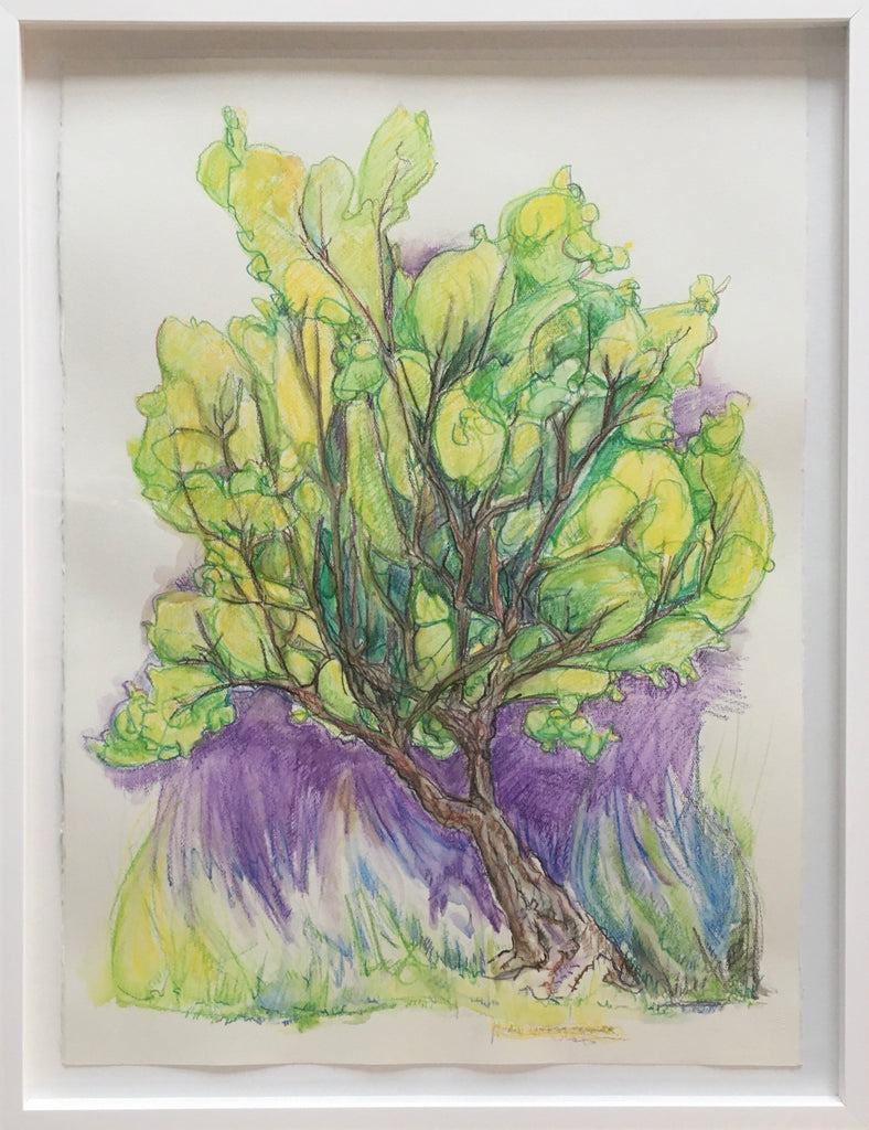 Image shows a watercolour crayon drawing of a single tree with plume-like yellow green foliage, much of the paper remains white, but the immediate area around the tree is coloured purple, descending down into a yellow grassy base. The drawing is mounted in a white shadowbox frame, and the raw edges of the paper are visible. Drawing is by Nova Scotia artist Sarah Irwin.