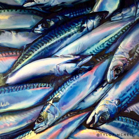 In Rainbows (Mackerel)