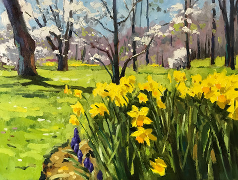 A small oil painting of the Halifax Public Gardens in spring. In the bottom right corner is a large bed of yellow daffodils, lined with small blue bells. In the background, dark trunks shoot up from a green lawn, some covered in white blossoms. By Nova Scotia artist Mark Grantham.