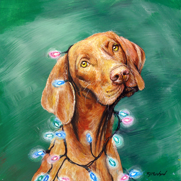 dog with christmas lights by rj marchand