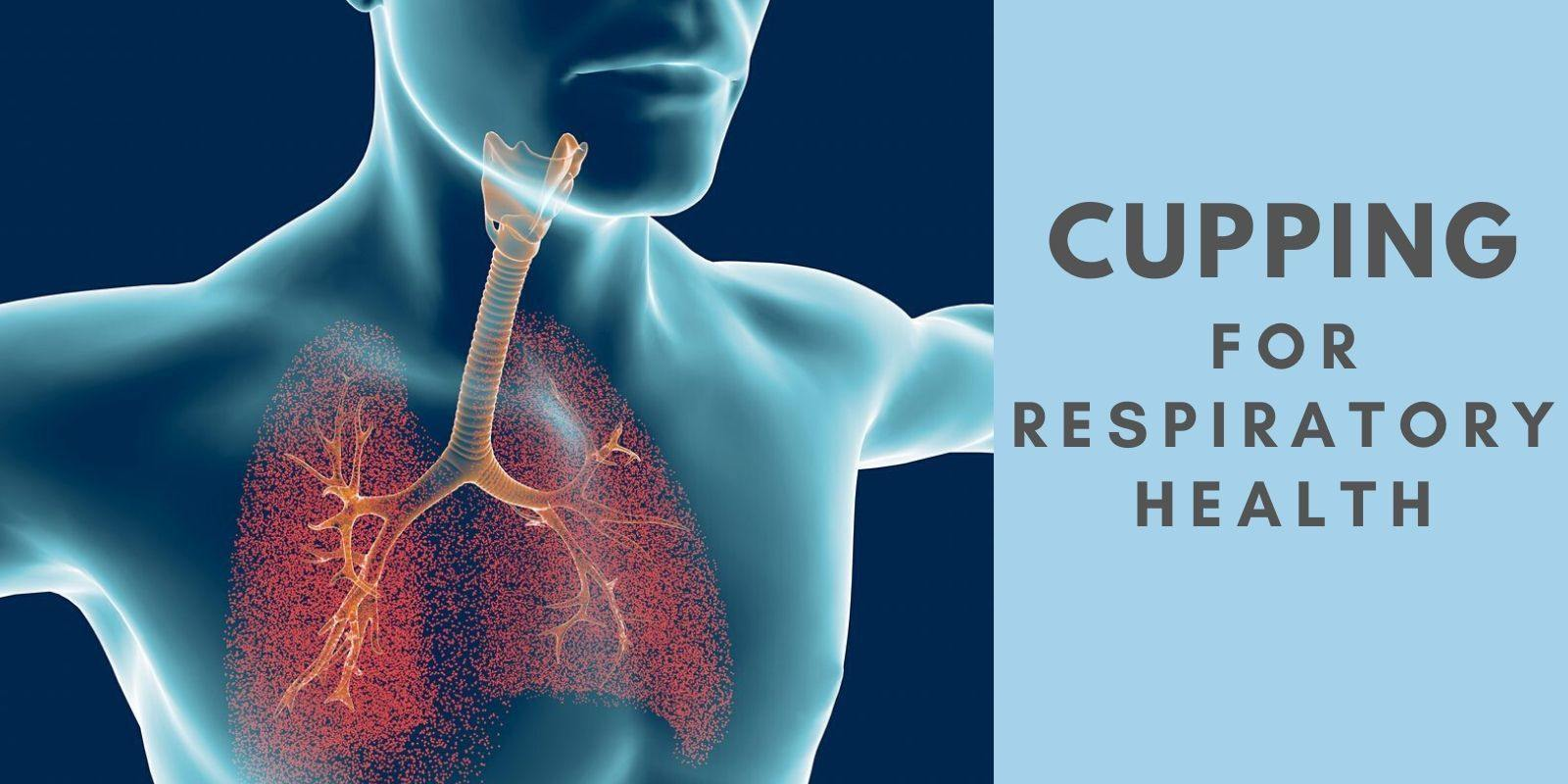 Cupping for Respiratory Health - Lure Essentials