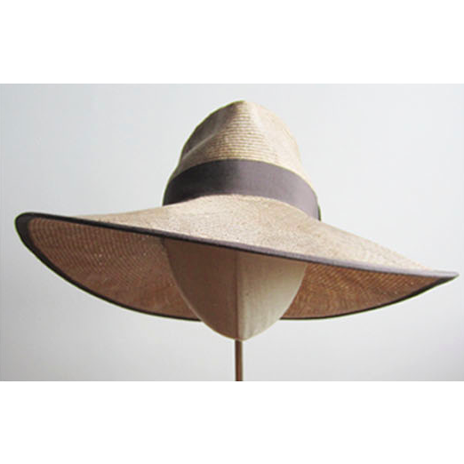Wide Brim Tan Hat