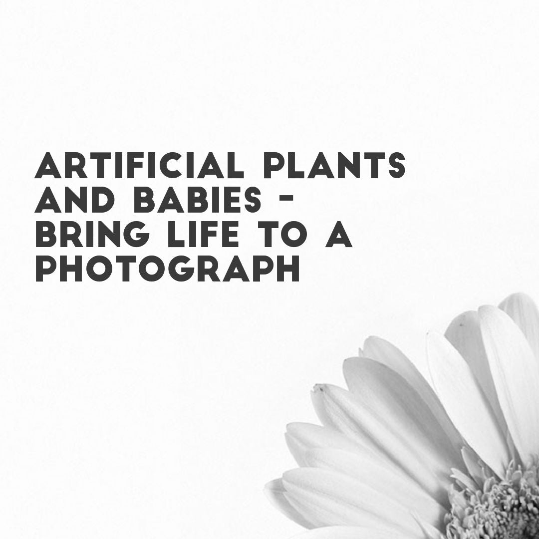 Fake plants and babies - How fake hedges can bring life to a photograph