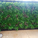 Zebrina Forest - Artificial Vertical Garden