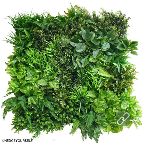 Hedge Panel - Are You For Real - Hand Assembled Vertical Garden