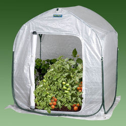 Plant-House Home Garden Cold Frame Style Greenhouse (3' x 3'), Outdoor > Gardening > Greenhouses, Jimis Country Store - Jimis Country Store