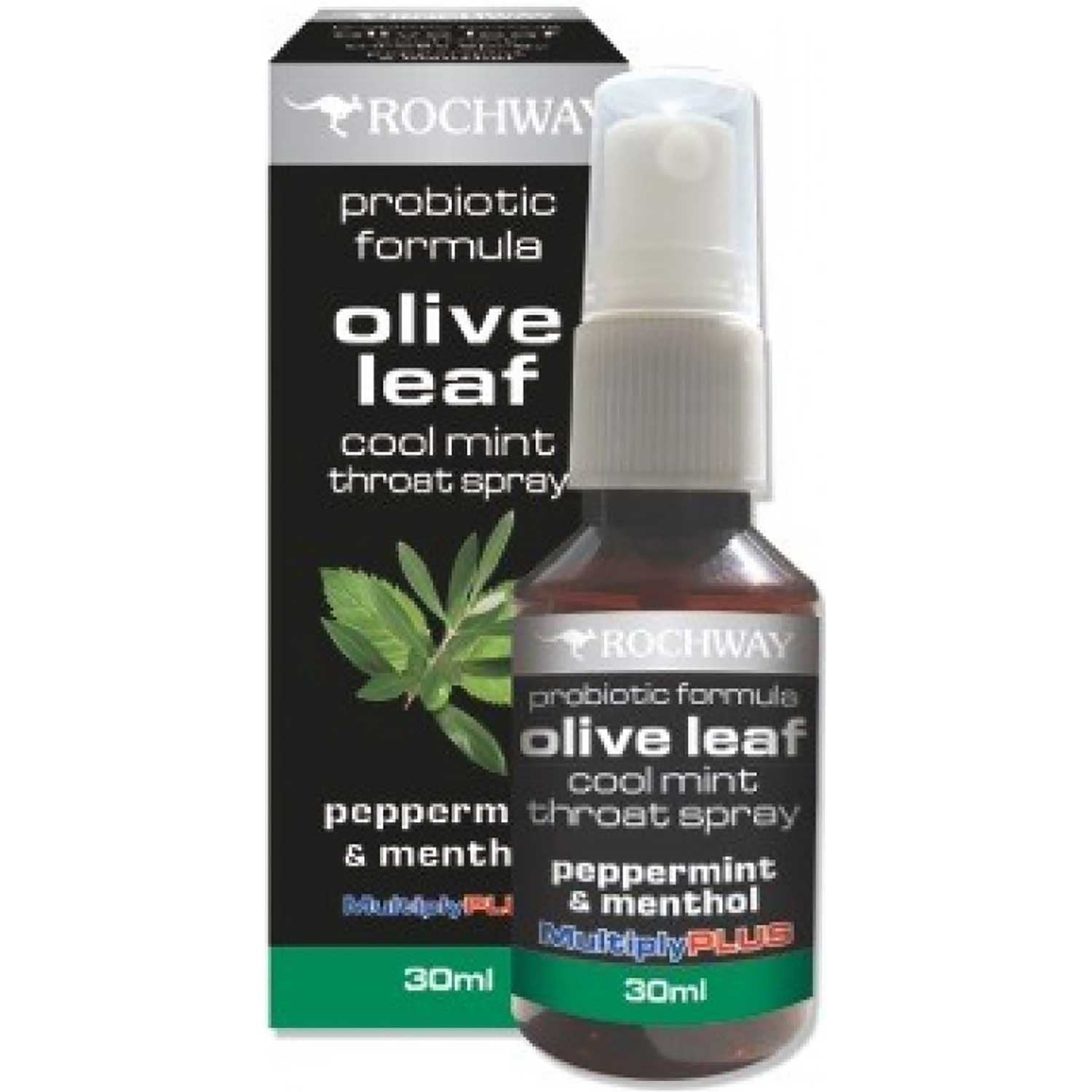 Rochway Olive Leaf Cool Mint Throat Spray, 30ml.-NaturesWisdom