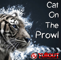 Cat On The Prowl- 2:30