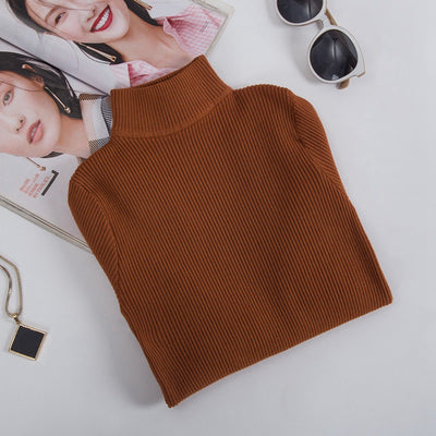 Ribbed Turtleneck Sweater (5 Colors)