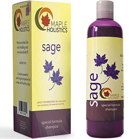 Maple Holistics Sage Shampoo For Anti Dandruff With Jojoba, Argan, And Organic Tea Tree Oil   Natura