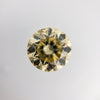 1.00ct Champagne 6.31x6.24x4.06mm Round Brilliant F-061- Dream Diam Exclusive