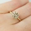 1.73ct Champagne Diamond Solitaire in Evergreen Carved Recycled Yellow Gold
