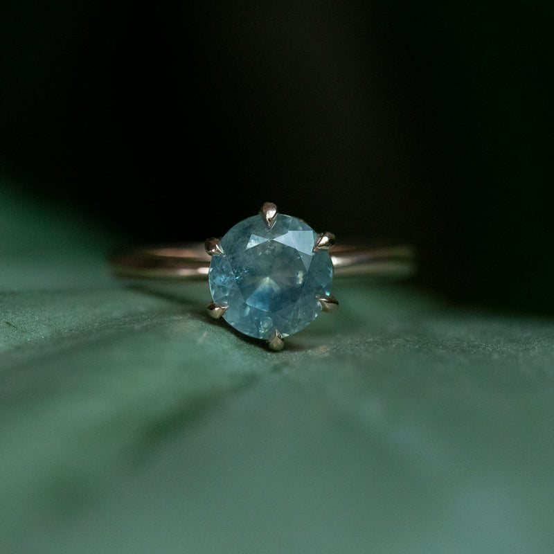 1.85ct Seafoam Montana Sapphire in Lotus Six Prong Solitaire in 14k Rose Gold