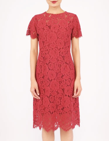 Elodie Lace Sheath Dress (Red)