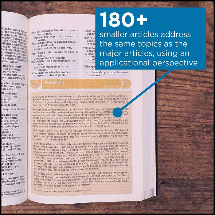 NIV, Storyline Bible, Hardcover, Comfort Print: Each Story Plays a Part. See How They All Connect.