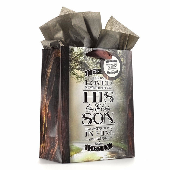 Tree-Lined Road - John 3:16 Medium Gift Bag