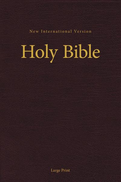 NIV, Pew and Worship Bible, Large Print, Hardcover, Burgundy, Comfort Print