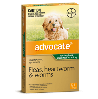 Advocate Treatment for Small Dogs 0-4Kg 1's (Green) - Petzyo