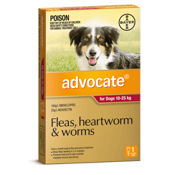Advocate Treatment for Dogs Large 10-25Kg 1's (Red) - Petzyo