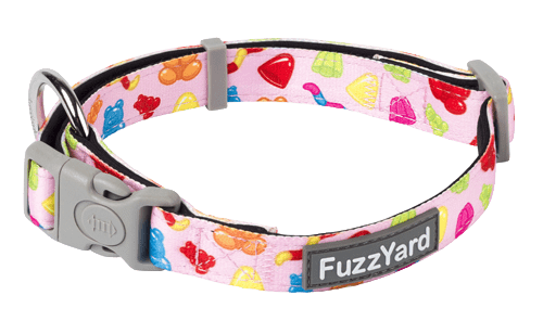 Fuzzyard Dog Collar - Jelly Bears - Multiple Sizes - Petzyo
