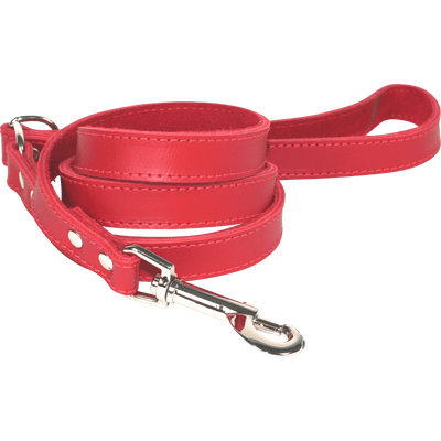 Dogue <span> Plain Jane Lead </span> 120cm * 18mm